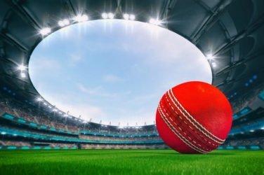 Cricket Ball In Stadium